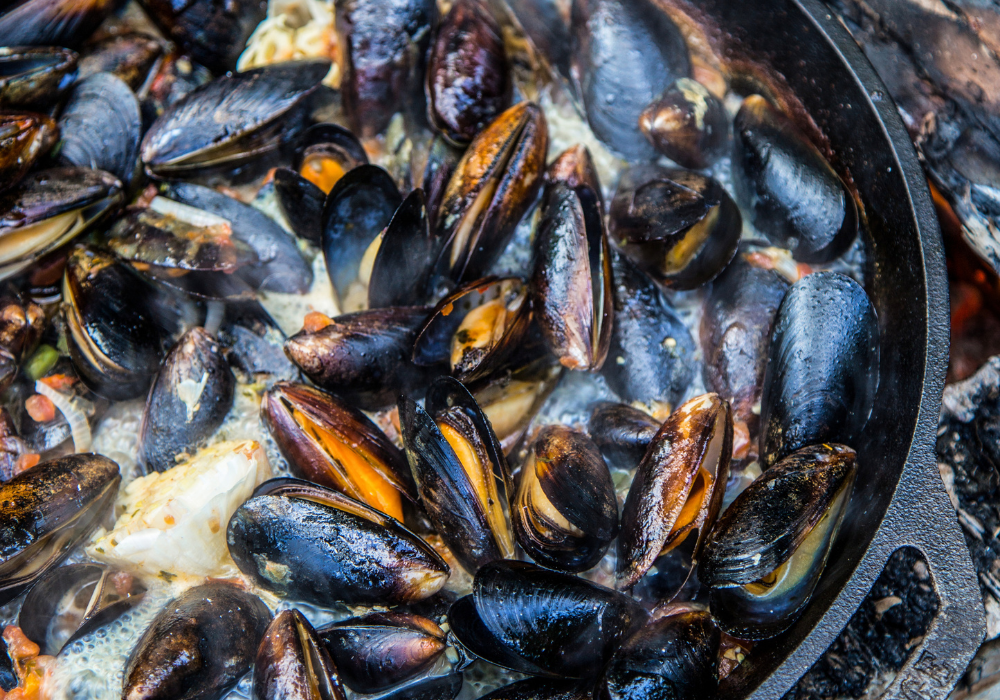 How to cook mussels on a campfire